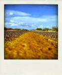 The-Road-markup-orizzonte-disseminato-600x450-pola
