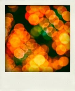 luci-sfocate-mosse_19-115803-pola
